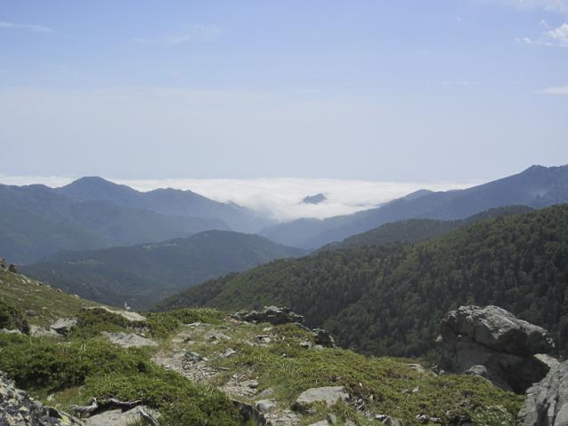 Vallée de Ghisoni