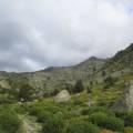 Vallon du Manganello (1)