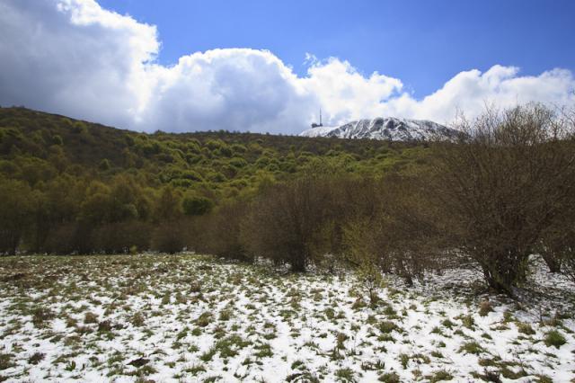 Face nord du Puy de Dôme depuis la Cime de la Plaine