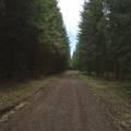 Les pistes au pied du Puy de Jume