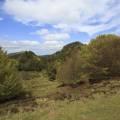 Cratère du Puy des Gouttes, Puy de Louchadière et Puy Chopine